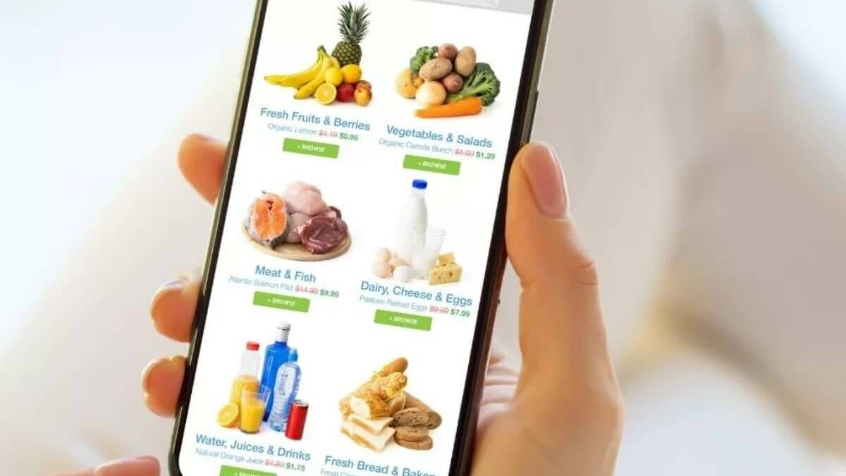 How to Develop an app for online grocery shopping like elGrocer?