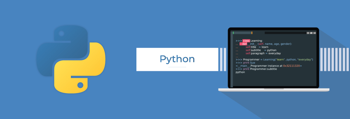 Python programming language for developers